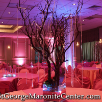 grand-ballroom-coral-too